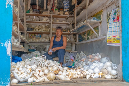 Indian man with shop selling many sea shells  in Guwahati in Assam in India