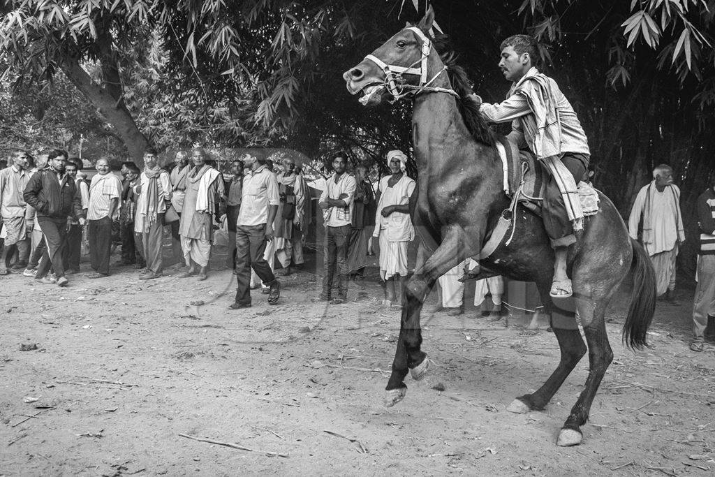 Man riding horse in horse race at Sonepur horse fair in black and white