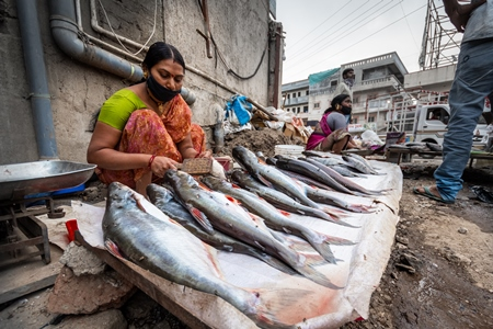 Roadside Indian fish stall or market with woman descaling fish in Pune, India, 2021